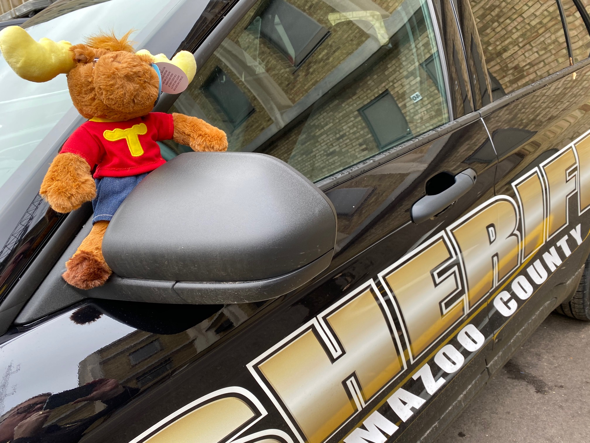 Tommy Moose is posed on the sideview mirror of a KCSO cruiser.